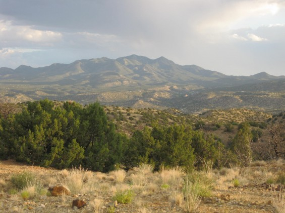 The Ortiz Mountains