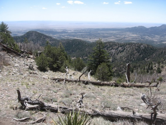 View from Placer Peak