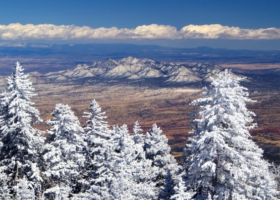 Snowy View From Sandia Crest