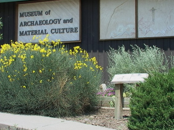 The Museum of Archaeology and Material Culture